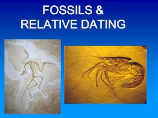 FOSSILS &  RELATIVE DATING