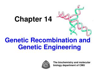 Chapter 14 Genetic Recombination and Genetic Engineering