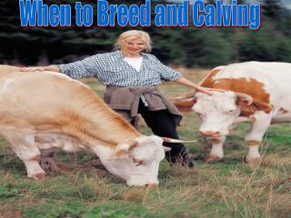 When to Breed and Calving