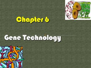 Chapter 6 Gene Technology