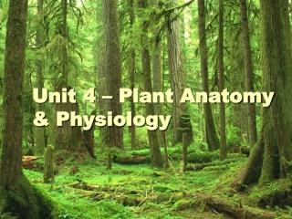 Unit 4 – Plant Anatomy & Physiology