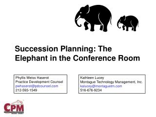 Succession Planning: The Elephant in the Conference Room