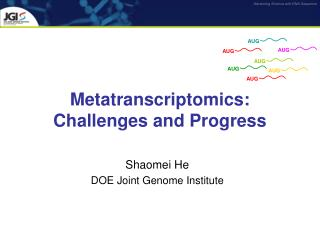 Metatranscriptomics: Challenges and Progress