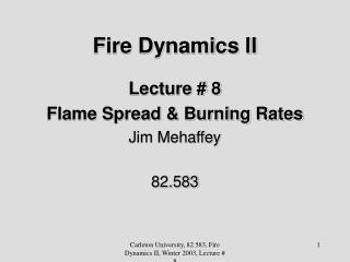 Fire Dynamics II