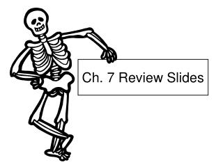Ch. 7 Review Slides