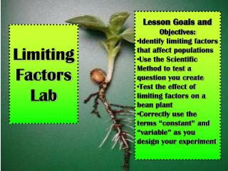 Limiting Factors  Lab
