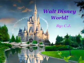 Walt Disney  World !