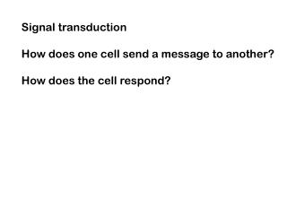 Signal transduction How does one cell send a message to another? How does the cell respond?