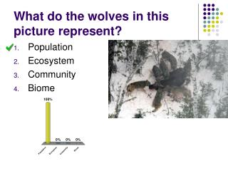 What do the wolves in this picture represent?
