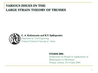 VARIOUS ISSUES IN THE  LARGE STRAIN THEORY OF TRUSSES