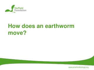 How does an earthworm move?