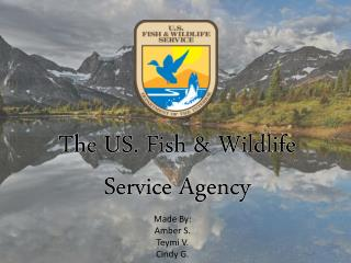 The US. Fish & Wildlife Service Agency
