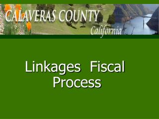 Linkages Fiscal Process