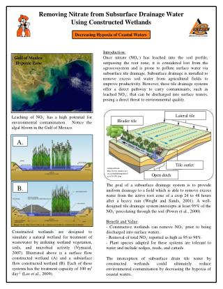 Removing Nitrate from  Subsurface  Drainage  Water  Using  Constructed Wetlands