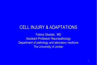 CELL INJURY & ADAPTATIONS