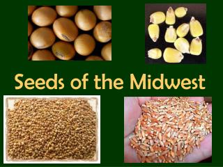 Seeds of the Midwest
