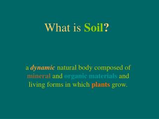What is Soil ?