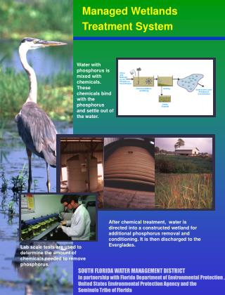 Managed Wetlands  Treatment System