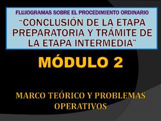 MÓDULO 2 MARCO TEÓRICO Y  PROBLEMAS OPERATIVOS