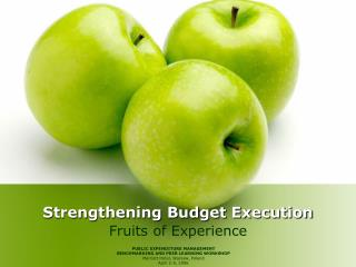 Strengthening Budget Execution