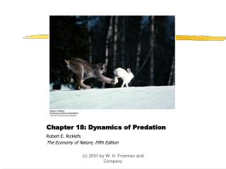 Chapter 18: Dynamics of Predation