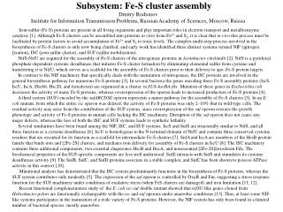 Subsystem: Fe-S cluster assembly
