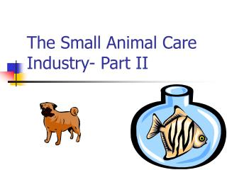 The Small Animal Care Industry- Part II