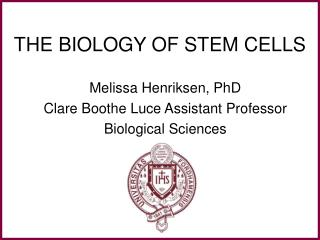 THE BIOLOGY OF STEM CELLS