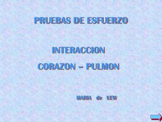 INTERACCION   CORAZON – PULMON