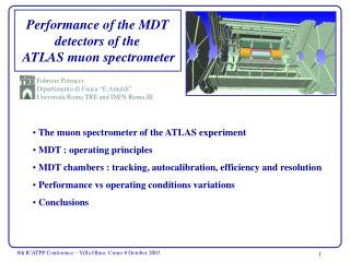 P erformance of the MDT detectors of the  ATLAS muon spectrometer