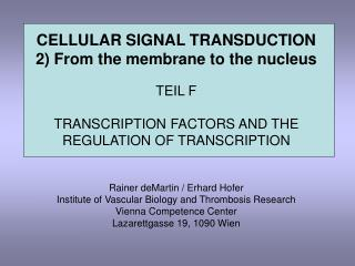 CELLULAR SIGNAL TRANSDUCTION 2) From the membrane to the nucleus TEIL F