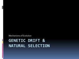 Genetic drift &  Natural Selection