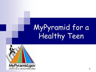 MyPyramid for a Healthy Teen