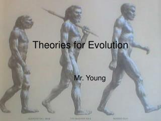 Theories for Evolution