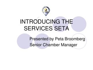 INTRODUCING THE SERVICES SETA