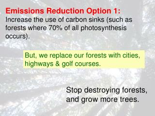 But, we replace our forests with cities, highways & golf courses.