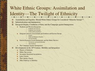 White Ethnic Groups: Assimilation and Identity—The Twilight of Ethnicity
