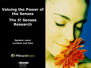 Valuing the Power of the Senses The 5! Senses Research