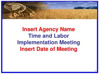 Insert Agency Name Time and Labor Implementation Meeting Insert Date of Meeting