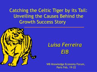 Catching the Celtic Tiger by its Tail: Unveiling the Causes Behind the Growth Success Story