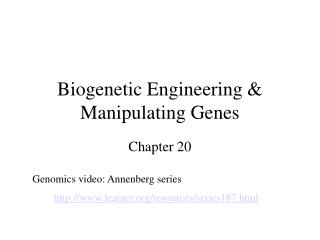 Biogenetic Engineering & Manipulating Genes