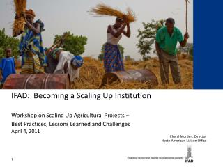 IFAD:  Becoming a Scaling Up Institution Workshop on Scaling Up Agricultural Projects –