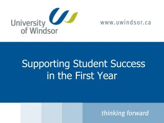 Supporting Student Success in the First Year