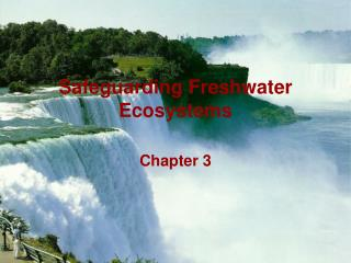 Safeguarding Freshwater Ecosystems