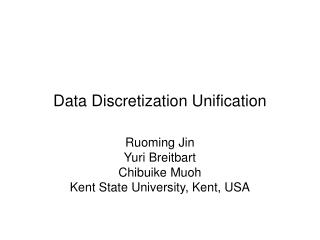 Data Discretization Unification