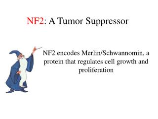 NF2 : A Tumor Suppressor
