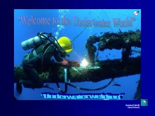 """Welcome to the Underwater World"""