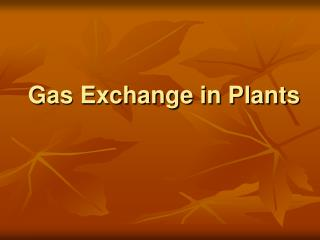 Gas Exchange in Plants