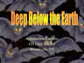 Appalachian Caverns 420 Cave Hill Rd. Blountville, TN