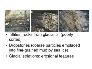 Tillites: rocks from glacial till (poorly sorted) Dropstones (coarse particles emplaced into fine-grained mud by sea ice